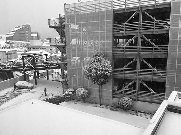 雪かきの朝