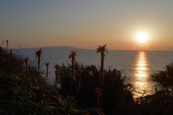 尾ヶ崎パーキングエリアで日の出となりました