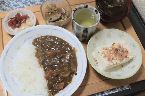 カレーライスと豆腐の一丁食い