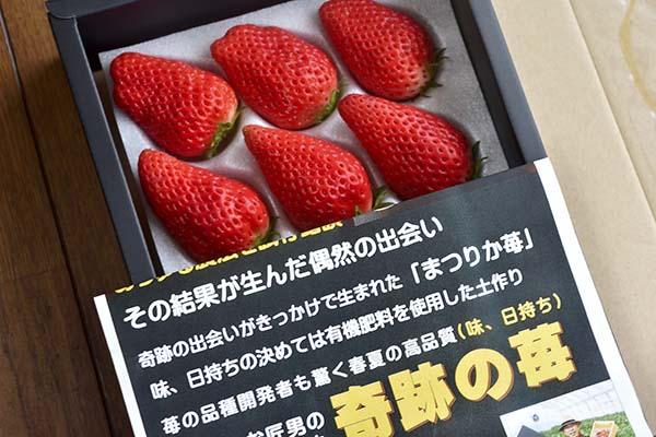 奇跡のイチゴ