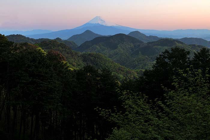 登山口からの紅富士