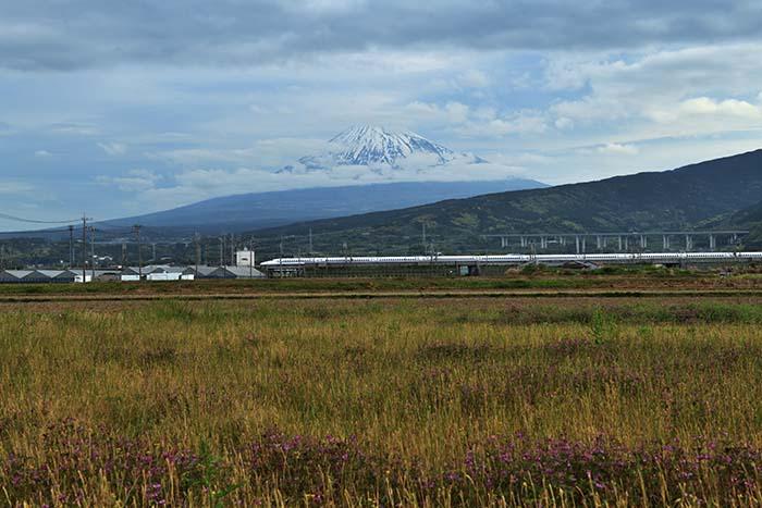 富士市浮島地区