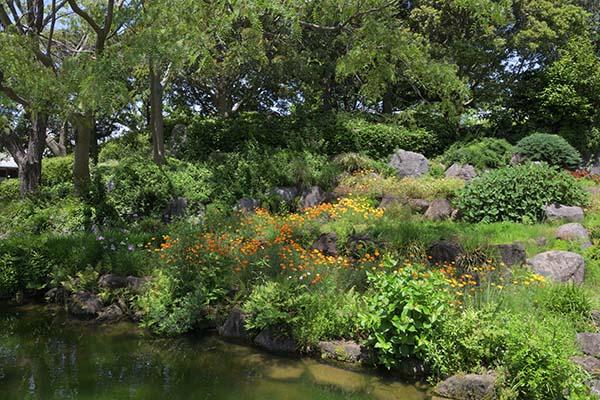 広大な敷地に水と花の公園