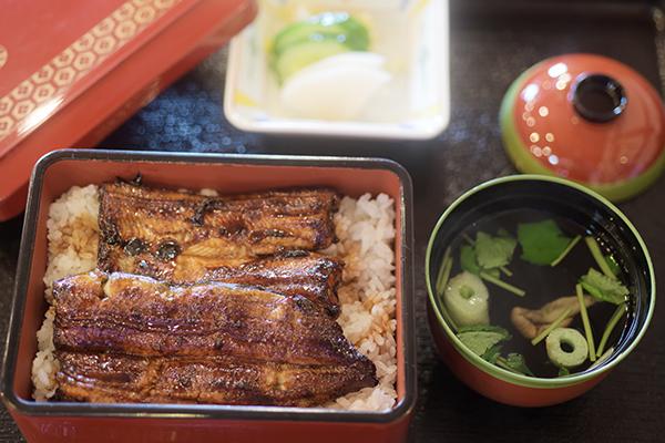 やわらかな鰻、濃すぎないタレの鰻丼でした