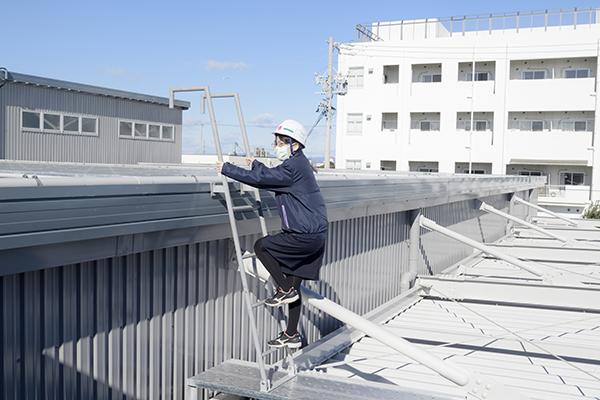 1階の屋根から工場の屋根に階段を上る