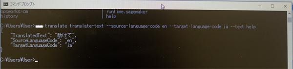 言語翻訳プログラムをテストして稼働を完了しています