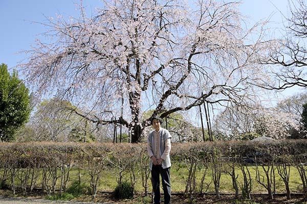 城北公園桜と母