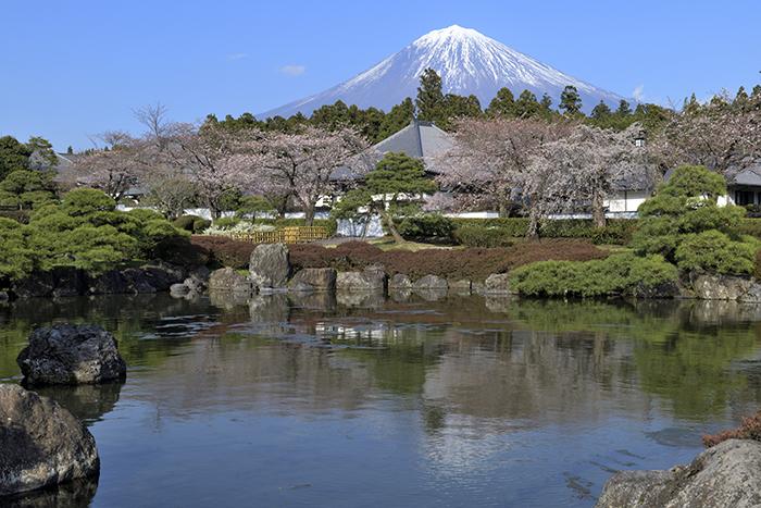 宝祥院からの富士山