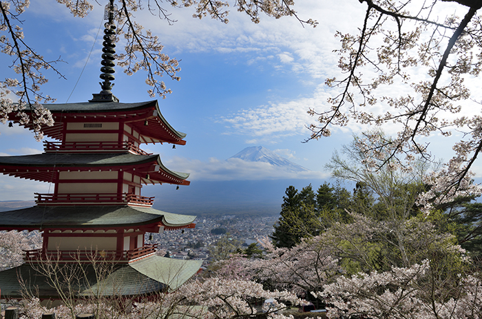 忠霊塔の春