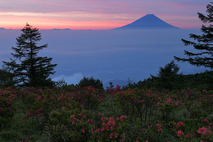 夜明けの甘利山