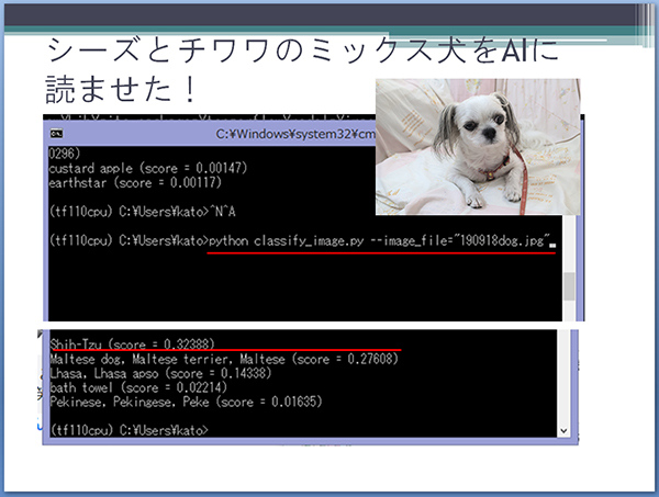 機械学習でミックス犬を見抜く