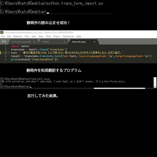 「静岡弁」英訳の結果(AI)