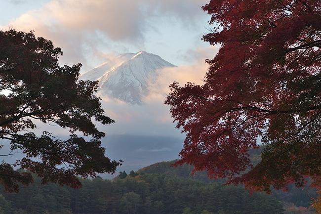 朝焼けと富士山の目覚め