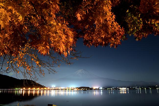 紅葉と富士山夜景