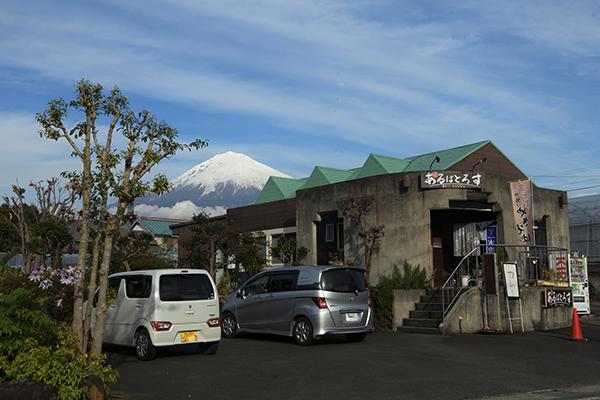 富士宮焼きそば、居酒屋あるばとろす