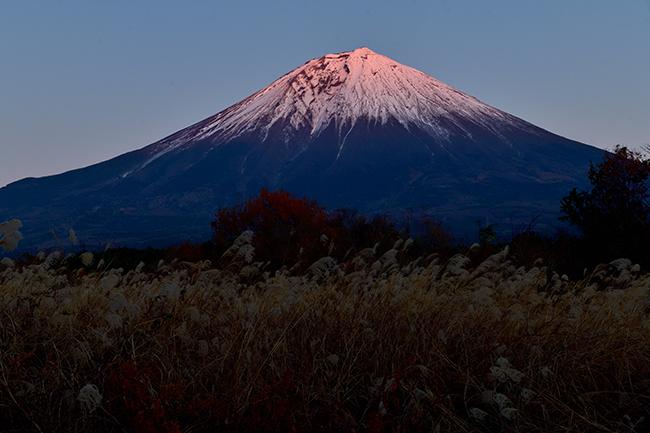 朝霧高原からの紅富士