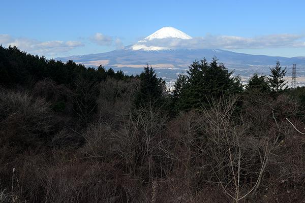 ふじみ茶屋で富士山撮影