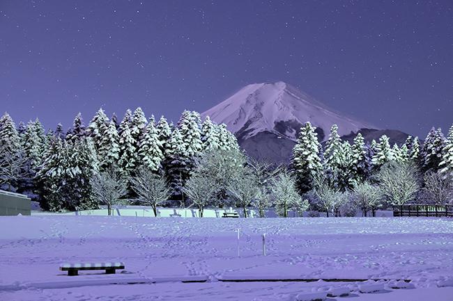 新雪夜景。