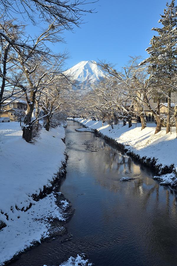 忍野八海雪景色